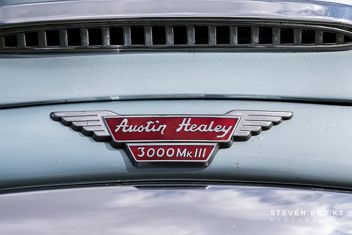 Norfolk photographer steven brooks photographs a a austin heal;ey car badge at Britain Does Vintage at Stody Lodge