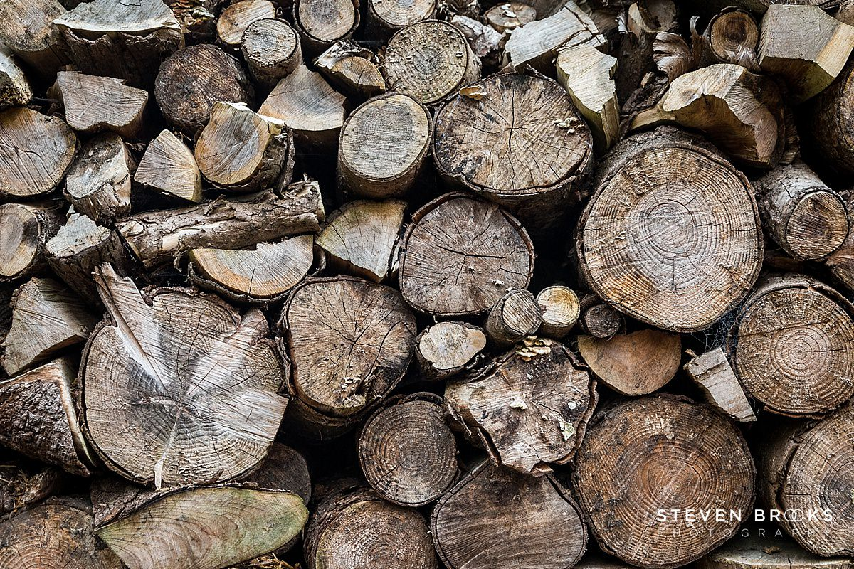 Norfolk photographer steven brooks photographs a wood log pile on the Stody Lodge estate in Norfolk