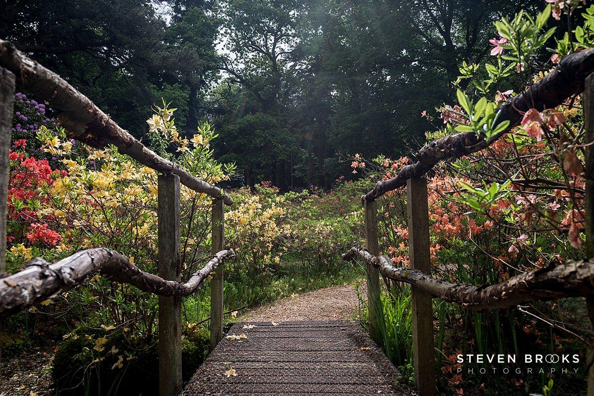 Norfolk photographer steven brooks photographs a wooden bridge on the Stody Lodge estate in Norfolk