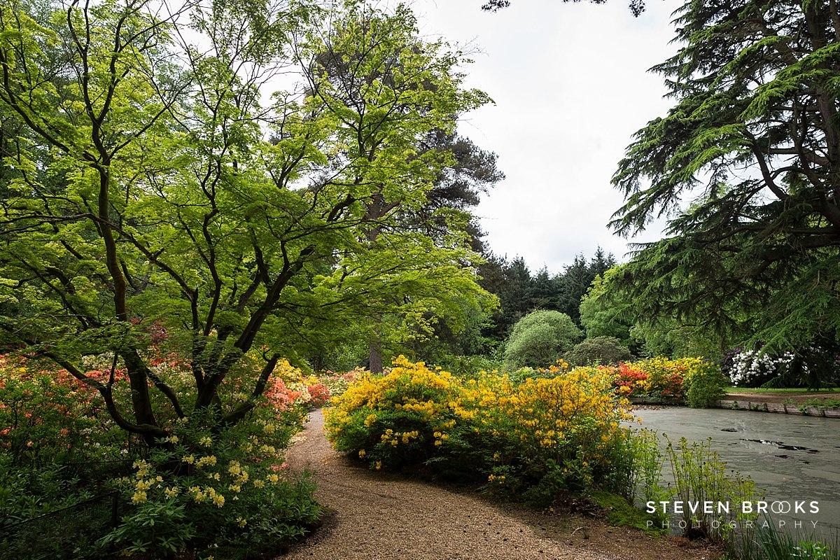 Norfolk photographer steven brooks photographs the water garden on the Stody Lodge estate in Norfolk